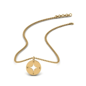 direction-disc-gold-pendant-in-FDPD67120-NL-YG